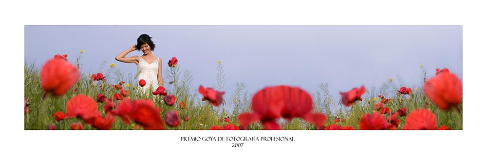 Premio Goya de Fotografía Profesional 2007