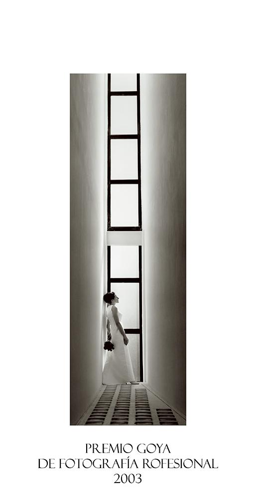 Premio Goya de Fotografía Profesional